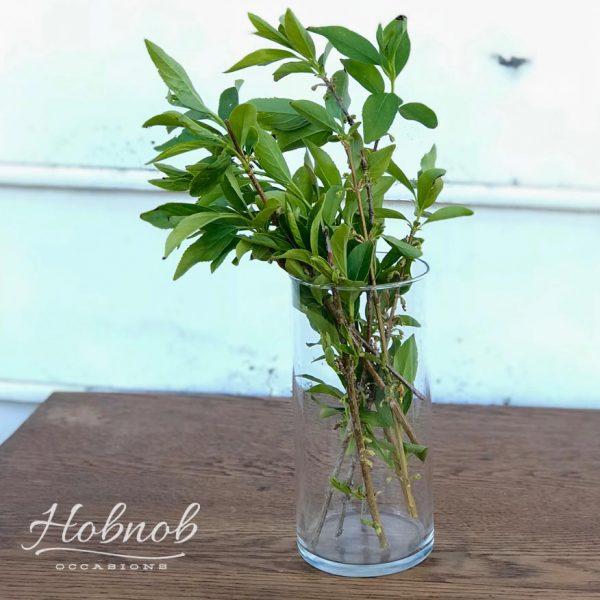 Hobnob Occasions Glass Cylinder